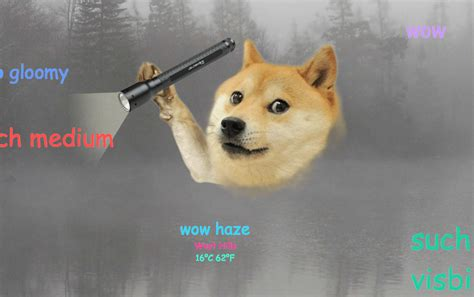 What Is The Doge Meme - dog meme wow snow