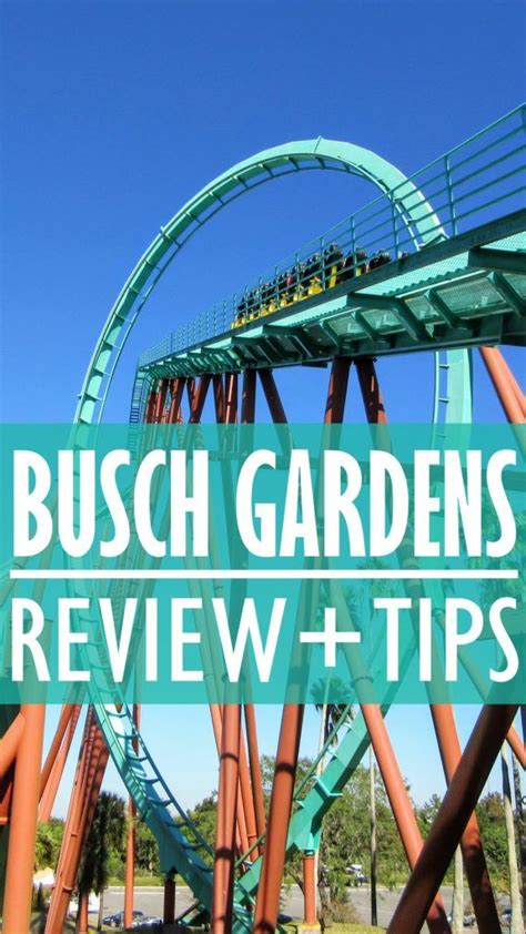 Busch Gardens Family Vacation Packages Tampa  Fasci Garden