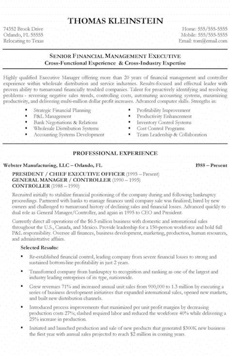 chief executive officer resume exle