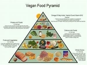 5 Reasons Why Vegan Diet May be a Bad Idea
