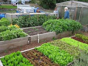 Pleasant Idea Front Yard Vegetable Garden Designs 17 Best