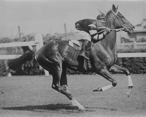 jockey lap phar famous cup pike flemington jim 1930 racing melbourne horse racehorses most australia race racehorse history champion depression