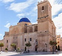 Basílica de Santa María, Elche | Parques, Palmeras, Fotos