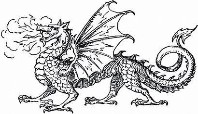 Dragon Clip Graphics Fairy