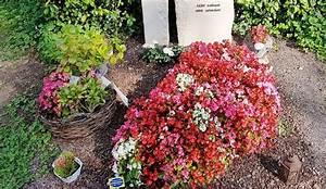 Welche Blumen Blühen Im Oktober : grabgestaltung fr hling sommer herbst winter 30 bilder fotos ~ Bigdaddyawards.com Haus und Dekorationen