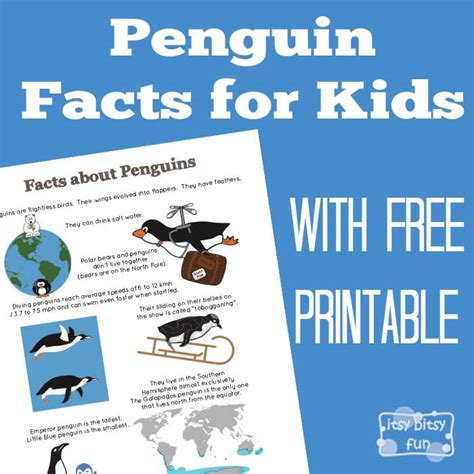 penguin facts for itsy bitsy 965 | 2164734 orig