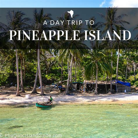 A Day Trip To Vietnam's Pineapple Island  Hon Thom