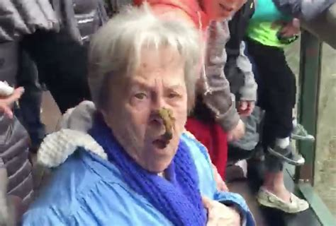 poop face monkey grandma thrillist social