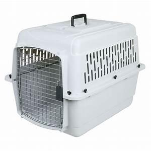 petmate pet porter medium sized kennel With petmate medium dog crate