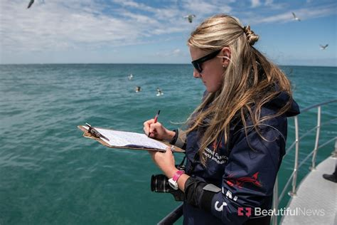 Marine biologist dives in with the sharks for ...