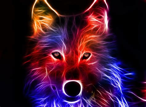 Cool Animal Wallpaper Light Wolf - awesome cool animal wallpaper light wolf anime wallpapers
