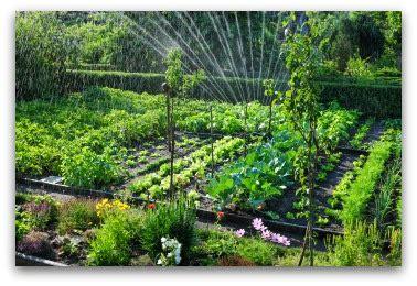 beautiful vegetable garden plans  ideas