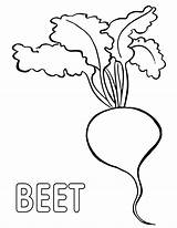 Coloring Beet Pages sketch template