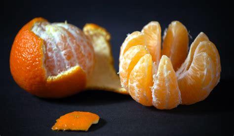 Receptes.lv - Vistas karbonāde ar baklažānu, tomātiem un sieru