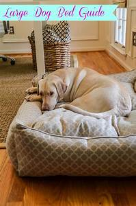 25 best ideas about large dog beds on pinterest big dog With cute big dog beds