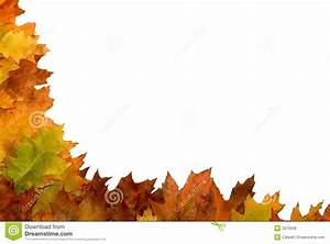 Autumn leaf border stock photo. Image of mount, autumn ...