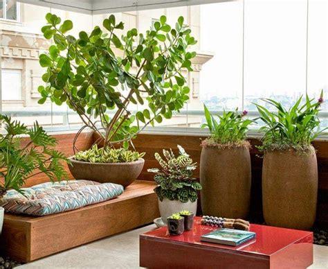 canapé balcon brise vue balcon avec plantes protegez vous regards curieux