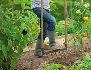 Rendre Une Terre Argileuse Plus Souple : arroser facilement ma haie mes arbustes et massifs botanic ~ Melissatoandfro.com Idées de Décoration