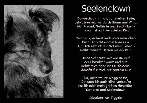 Seelenclown Foto & Bild  tiere, haustiere, hunde Bilder