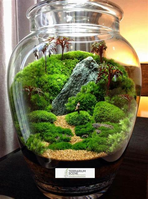 Terrarium Ideas, Bring A Miniature Natural Scene In A