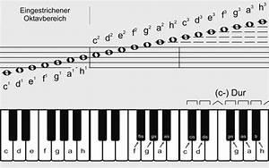 Musik Zum Lesen : noten lesen lernen wie musik klavier ~ Orissabook.com Haus und Dekorationen