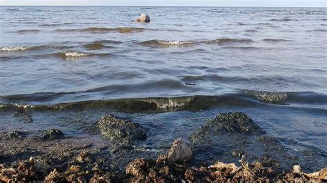 2019.06.21. Engures pludmale. - YouTube