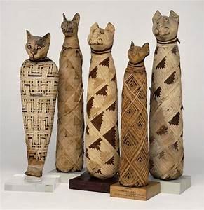 ALL MY EYES: Animal Mummies
