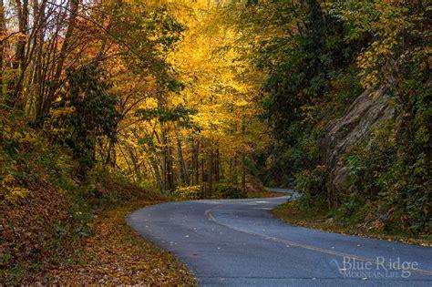 Fall Foliage 2018 Forecast And Guide Blue Ridge Mountain