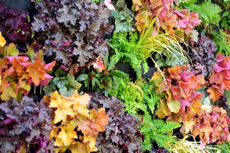 Plants On Walls-florafelt Vertical Gardens