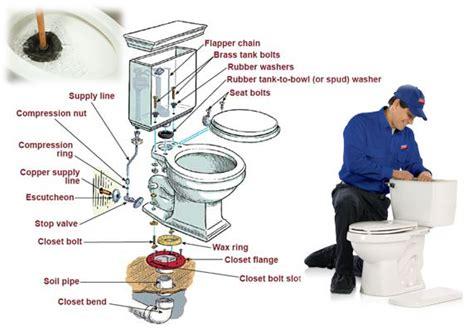 toilette bouche comment faire 6 m 233 thodes pratiques pour faire un d 233 bouchage toilette bouch 233 e