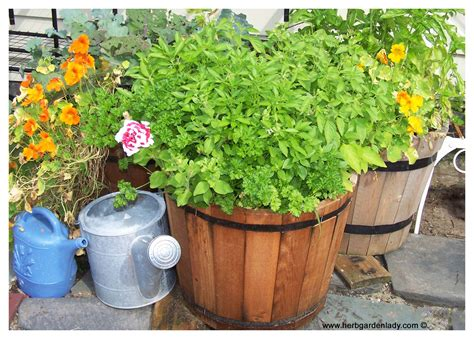 herb planter where to start with pots boxes wagon wheel