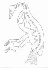Aboriginal Bark Worksheet Coloring Lesson sketch template