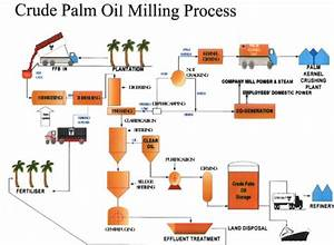 Palm Oil Processing Flow Chart Industry News Process Flow