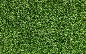 Rasen Kalken Wann : wann soll man den rasen kalken wann muss man den rasen kalken tipps f r die richtige ~ Orissabook.com Haus und Dekorationen