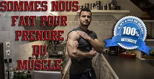 Sommes Nous Faits Pour Prendre Du Muscle