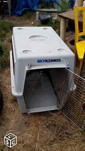 Grande Cage Pour Chien : troc echange grande cage pour chien sur france ~ Dode.kayakingforconservation.com Idées de Décoration