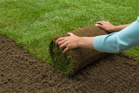 cost to lay grass sod ottawa ottawa sod installation experts
