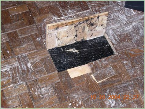 asbestos masticglue yelp