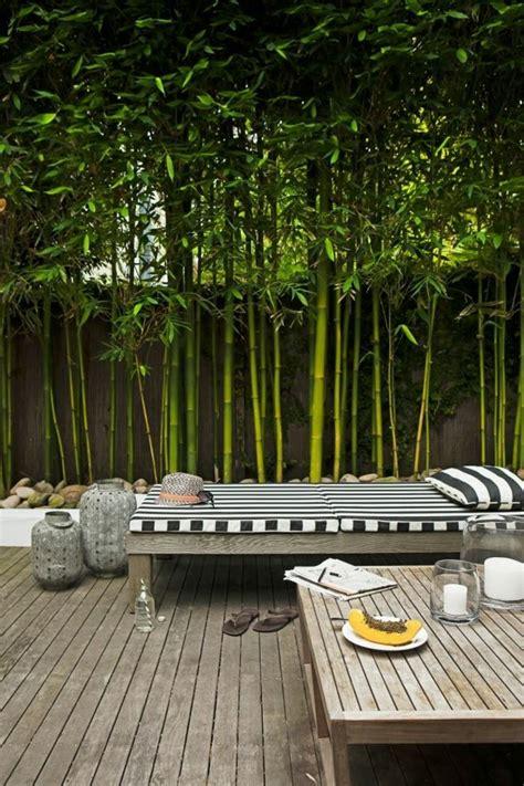 Separation Jardin Bambou by 1000 Id 233 Es 224 Propos De Cl 244 Tures De S 233 Paration Sur