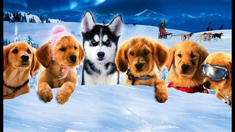 snow buddies cachorros en la nieve trailer espanol