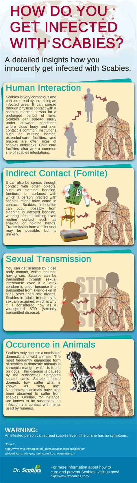 infected  scabies infographic