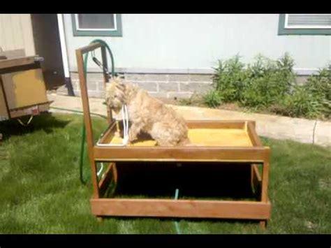 Dog Wash Station 1 - First Use - YouTube