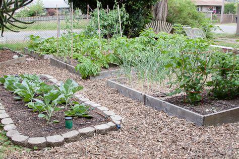 thrifty gardening tip free wood chips rake and make