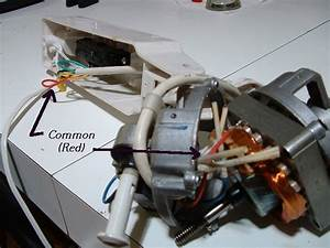 Stand Fan Motor Wiring Diagram