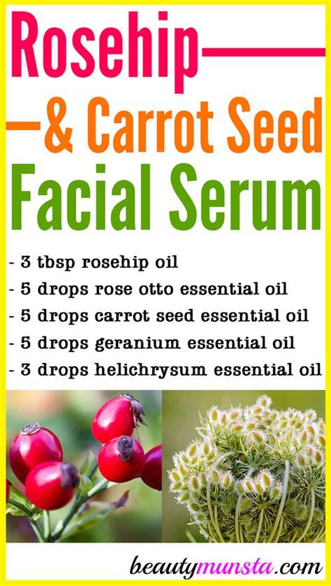 Rosehip and Carrot Seed Facial Serum - beautymunsta