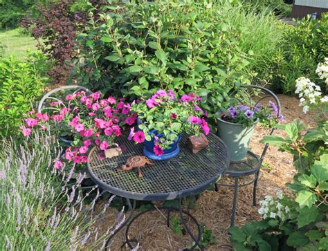wave petunias in pots our happy acres life in the slow lane