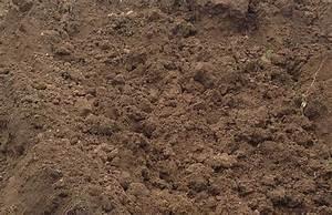 Ou Trouver De La Terre Végétale : terre v g tale non amend es solutions black bedroom ~ Premium-room.com Idées de Décoration