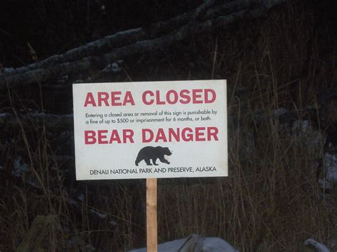 list  fatal bear attacks  north america wikipedia