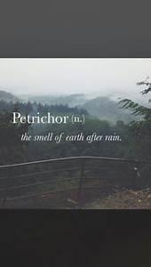petrichor on Tu... Petrichor