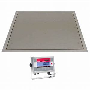 Stainless steel pit mounted floor scales